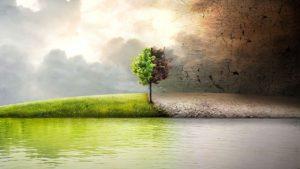 bonifica ambiente