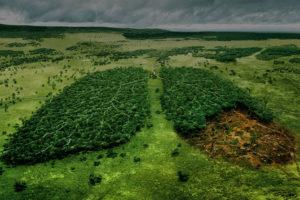 Bonifica ambientale
